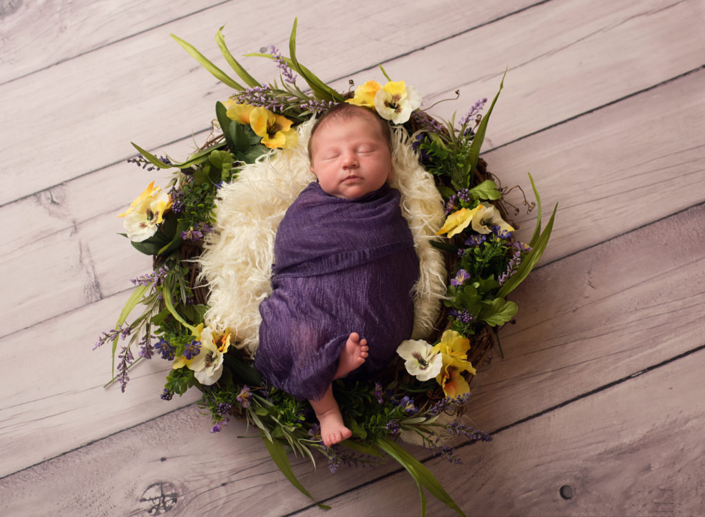 kathy rogers photography, lorain county photographer, newborn photographer, senior photographer, family photographer, maternity photographer, child photographer, photos, photography, pictures, baby girl, wreath, flower, purple, yellow, fur, newborn, studio