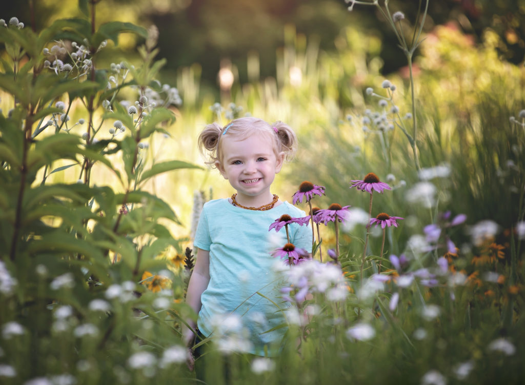 kathy rogers photography, lorain county photographer, newborn photographer, senior photographer, family photographer, maternity photographer, child photographer, little girl, wildflowers, sunlight, tall grass, child