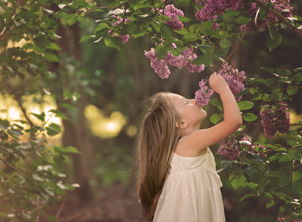 kathy rogers photography, lorain county photographer, newborn photographer, senior photographer, family photographer, maternity photographer, child photographer, little girl, lilac, smell, flowers, dress, trees, bush, outdoors